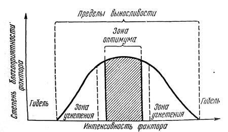 temperaturnyj-faktor